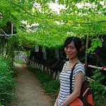 田中 photo